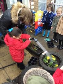 planting 2